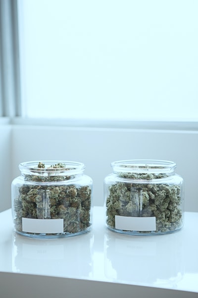 What you need to know about medical cannabis for cancer treatment